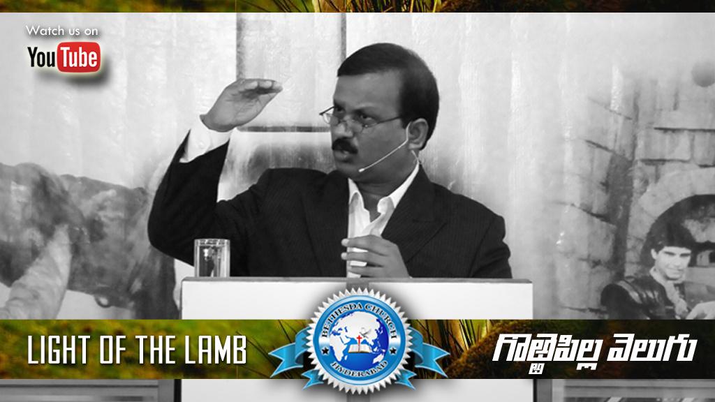 Light of the lamb