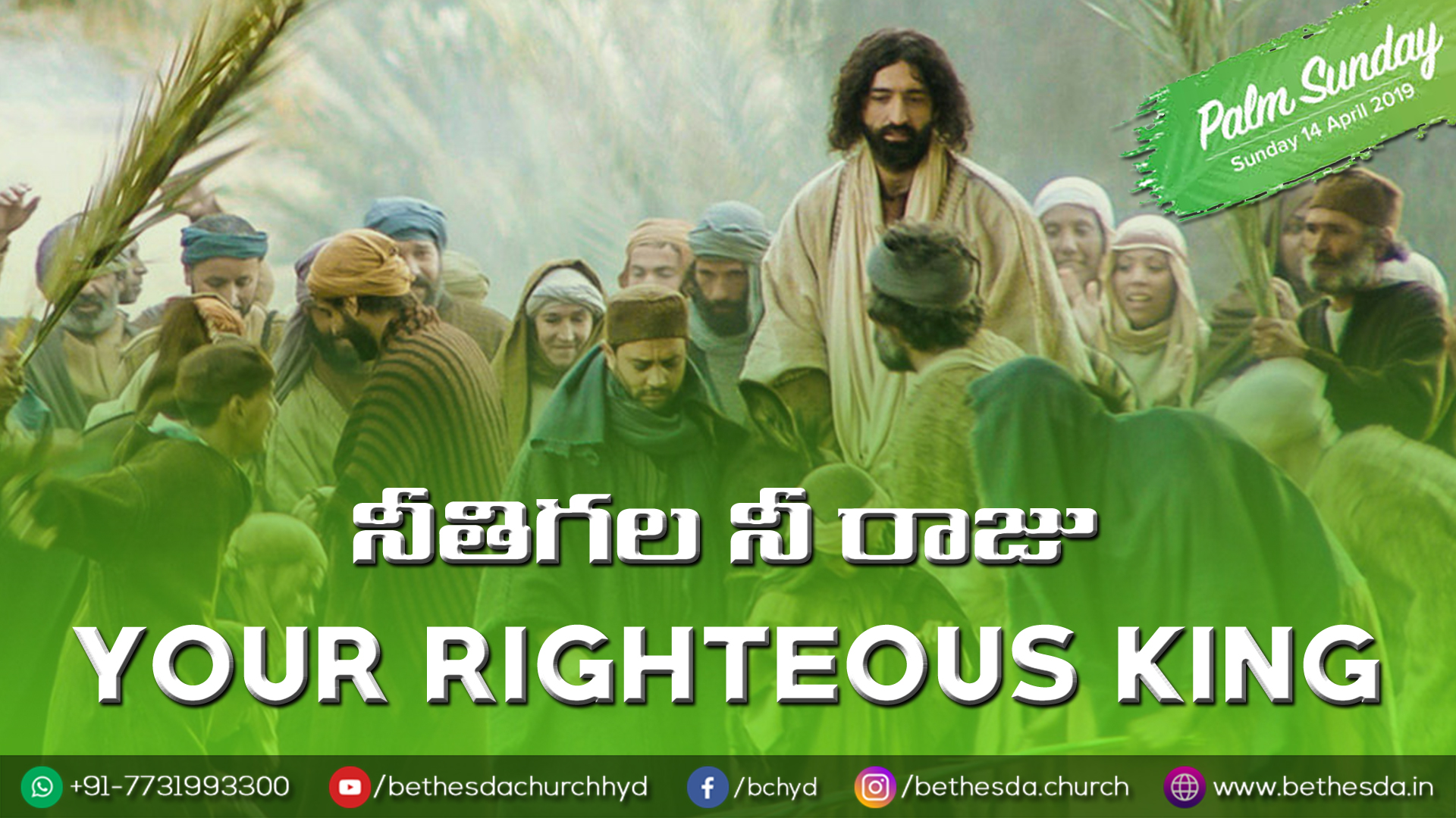 Your Righteous King (A359)
